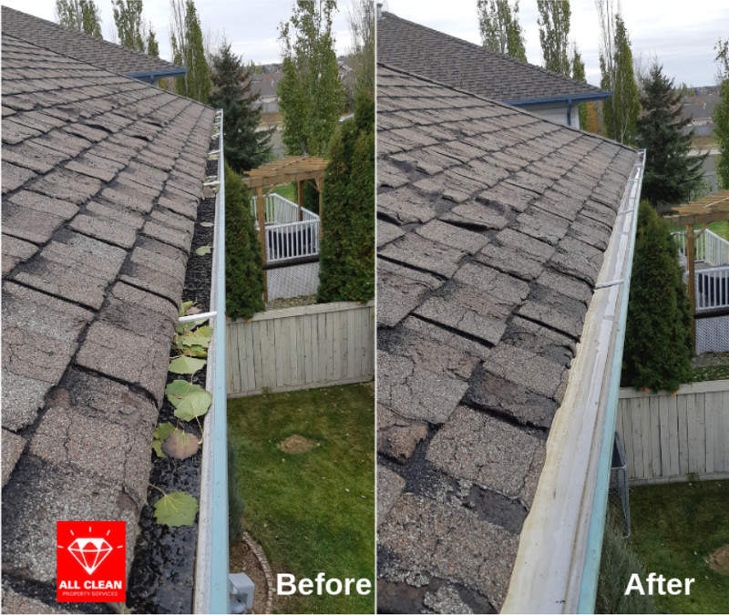 Before / After Photo of Gutter